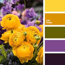 yellow color schemes dark yellow color palette ideas