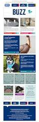 rspca archives charity email gallery