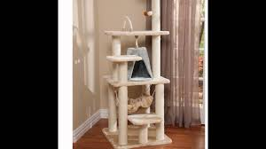 Cat Gyms The Best Cat Furniture Youtube