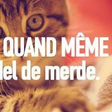 Comme Meme - quand m礫me qdmeme twitter