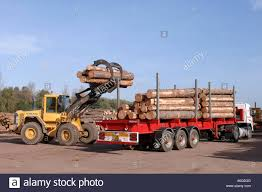 volvo lorries uk volvo handler loading a logging lorry with timber in a wood yard