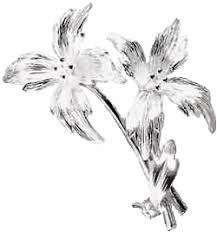 silver flowers image silver flowers png warriorcatclansrp wiki fandom