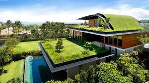 rooftop garden house design ideas artdreamshome artdreamshome