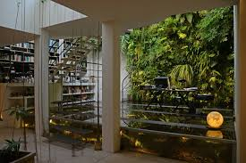modern eco friendly office design with creative indoor garden