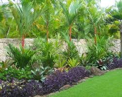 Tropical Gardening Ideas Tropical Landscaping Ideas Houston Landscaping Gardening Ideas