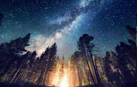 nature starry night hd wallpapers wallpaperscharlie
