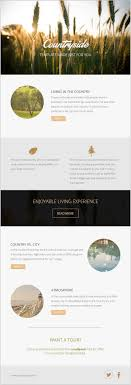 create email newsletter template the 25 best free email newsletter templates ideas on
