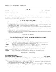 Government Jobs Resume Samples by Resume Examples For It Jobs Template