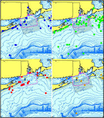 Map Rhode Island Marine Mammals Of Rhode Island Part 2 North Atlantic Right Whale
