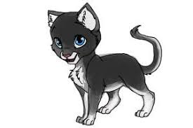 how to draw swiftpaw from warrior cats drawingnow