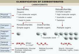 monosaccharides and oligosaccharides tutorvista com
