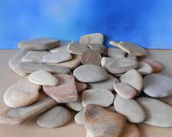 Garden Stone Craft - pebble art12 pieces fairy garden stepping stones decorative