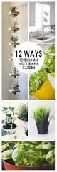 12 ways to build an indoor herb garden indoor herbs herbs