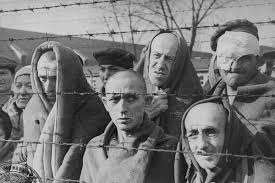 quotes about death camps read these searing quotes from an auschwitz survivor u0027s essay on