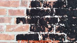 stains on brick surfaces how to identify clean or prevent stains