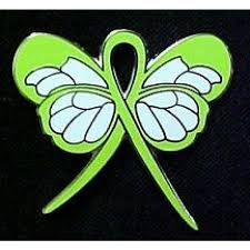 tay sachs awareness month september lime green ribbon butterfly