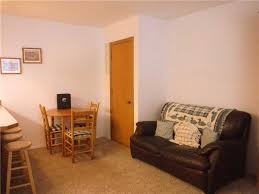 what is a daylight basement evergreen apartment is a 1 bedroom 1 bath bright daylight