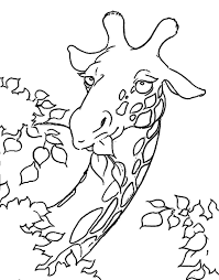 14 giraffe color pages free printable giraffe coloring pages for