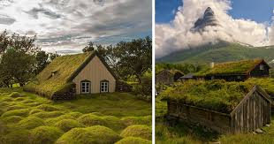 scandinavian houses 10 scandinavian houses with green roofs look straight out of a