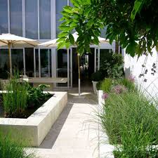 hampton court flower show small courtyard garden withpact