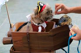 costumes at halloween city dressed up pets and more in this week u0027s best halloween themed