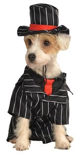 preview halloween costumes for dogs