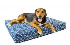 Covered Dog Bed Best Dog Beds For 2017 Spockthedog Com