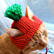 tomato costume for cats hand knit cat hat cat halloween