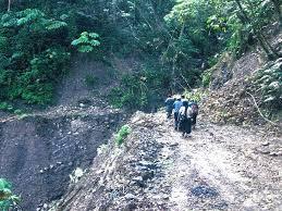 imagenes de sud yungas el diario últimas lluvias afectaron a 12 mil familias de caranavi