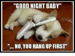 Good Nite Memes - 25 best memes about good night good night memes