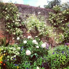 beautiful english garden most beautiful english gardens home decor