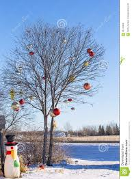 Outdoor Christmas Ornament Balls by Bare Tree Decorated With Christmas Ornaments Stock Photo Image