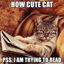 Cute Cat Meme Generator - how cute cat pss i am trying to read newspaper reading cat meme