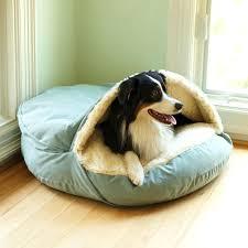 luxury large dog beds u2013 whatisbackpain info