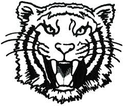 tiiger clipart tiger outline pencil and in color tiiger clipart