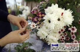 dog flower arrangement dog flower arrangements maltese dogs forum spoiled maltese forums