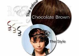 elegance hair extensions best 25 balmain hair extensions ideas on in style