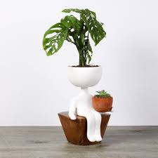 unique plant pots robert planta g is for green pinterest plants exotic