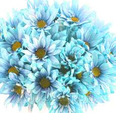 turquoise flowers buy turquoise wedding flowers