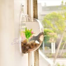 amazon com vktech plant wall hanging mount bubble aquarium bowl