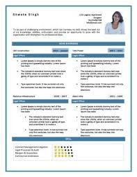 Resume Seo Sample Resume For Ceo Example Executive Or Ceo Careerperfectcom