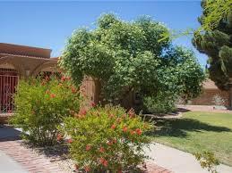 Botanical Gardens El Paso 6504 Tarascas Drive El Paso Chaparral Park 745309