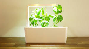 click and grow smart garden review youtube
