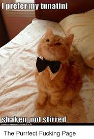 Purrrfect Meme - prefer my tunatini shaken not stirred canhhschee2eurger com the