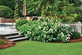 Garden Improvement Ideas Low Maintenance Landscaping Tips Atlanta Home Improvement Yard