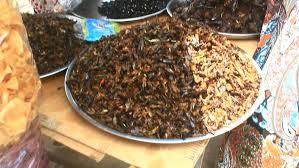 cuisine complete but cuisine incorporace but cuisine complete but cuisine cuisine