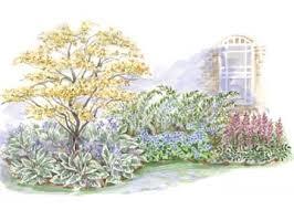 beginner garden for shade