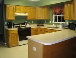 Kitchen Paint Colors With Golden Oak Cabinets Paint Colors For Kitchens With Golden Oak Cabinets Home Design Ideas