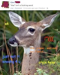 Doe Memes - doe sad to not be a real word interior monologue captioning know