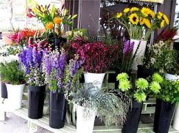 florists in florists in kochi flower shops in kochi kochi florists contact